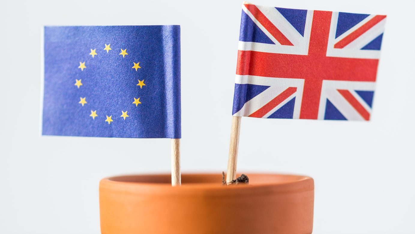 plant pot with european and british flag, concept population increase, FTA or nato